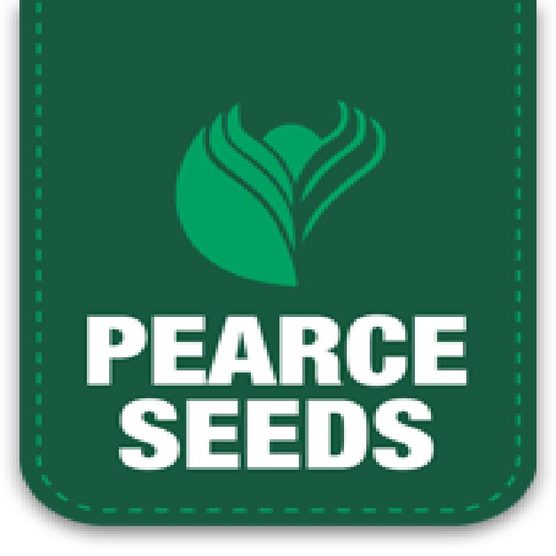 Pearce Seeds